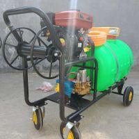 茶树香蕉树灭虫喷雾器 农作物蔬菜保护喷雾器