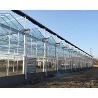 玻璃温室大棚的优势-玻璃温室大棚-太原益兴诚钢构工程