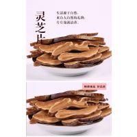 北京康瑞野生灵芝切片市场价格