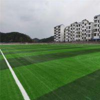 人造草皮 学校足球场专用人工草坪包铺装 50mm人造草白线草