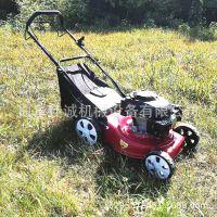 高效手扶式草坪修剪机 手推式草坪专用修剪机