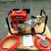 轻便汽油打药机低噪音电动喷雾机 农业植保手推式喷雾机 1