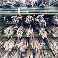 现货供应绑扶枸杞树苗用的3米4米小竹杆 青海诺木洪枸杞基地专用