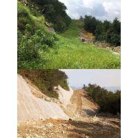 铜仁荒山边坡绿化植草喷播专用草种草籽植物种子多少钱一公斤