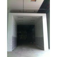 定制型双层三侧吹风淋室,洁净风淋室物流通道