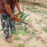 多功能铲式挖树机苗木断根机型号小型起苗机多少钱