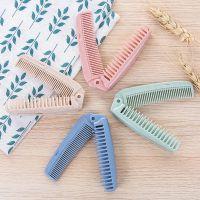 随身化妆梳子美发梳家用长发防静电密齿梳便携式小麦梳子特价批发