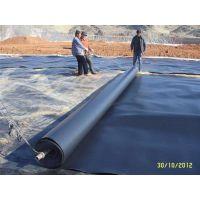 平凉土工膜销售 山东HDPE防渗膜厂家 土工膜HFG