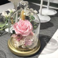 圣诞节 永生花玻璃罩礼盒摆件生日礼物DIY玫瑰花干花七彩灯送女友