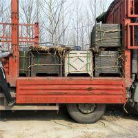 户外园林工程专用水泥仿木花箱 钢筋混凝土组合式花池