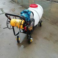 手推式高压打药机 路面清洗喷雾器 农业喷雾器直销