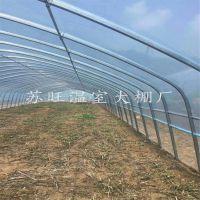 山西4分蔬菜大棚管 G832温室大棚  热镀锌椭圆管大棚骨架