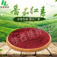 番茄红素  20%含量番茄粉   新疆番茄提取   100g/袋  现货包邮