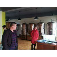 500升精酿啤酒设备 大型商用扎啤机器 小型家用酿酒机 原浆手工设备
