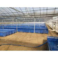 新型工业水产养殖帆布池 养鱼养虾帆布水池