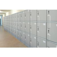 韶关天天特价abs储物柜文件柜中式办公柜文件柜塑料柜电子保密柜