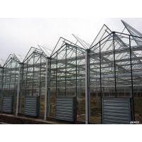 pc板连栋温室又称阳光温室使用寿命长达15年以上