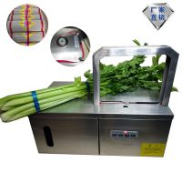 小型扎捆机厂家 佛香冥币专用打捆机全自动蔬菜捆绑机西藏现货