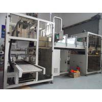 上海佳煜自动化供应非标瓶装全自动落差式装箱机