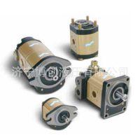 滑移装载机齿轮泵CASAPPA凯斯帕齿轮泵