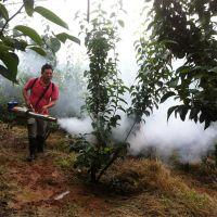 农用大棚杀虫弥雾机 手提式汽油脉冲烟雾水雾机 背负式烟雾机
