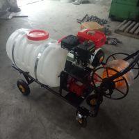 农用机械喷雾器设备 推车式农药喷洒机科博欢迎咨询