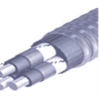 万达电缆QYEQNY型潜油电力电缆