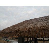 湖南省湘乡市本地景观仿茅草出厂价便宜,一平方大概使用多少片的样子?