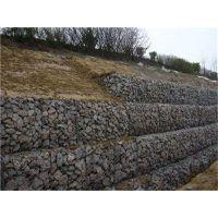护坡护岸热镀锌边坡防御边坡绿化修建重建堤防工程