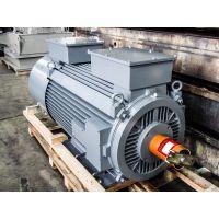 MENZEL电机MEBKSL355-06