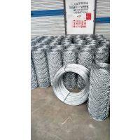 野猪养殖网多钱一米|供应斌佳镀锌勾花网|养野猪适合的铁丝网厂家