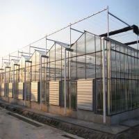 全自动玻璃温室整体设计安装施工 纹洛型玻璃温室大棚建造效果视频