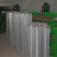 现货供应镀锌铁丝网,墙体保温电焊网,黑丝电焊网