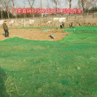 山东聚乙烯盖土网厂家 绿化裸土覆盖苫盖网防尘网 环保检查专用 建筑安全网