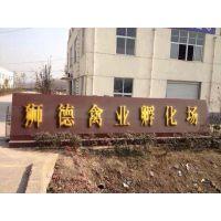 贵州黔西州鸭苗出售 500只鹅苗雏需要批发市场钱 广西狮头鹅苗养殖技术