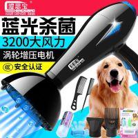 宠物吹风机大功率泰迪狗狗电吹风金毛静音大小型犬吹水机吹毛专用