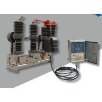 供应ZW8M-12/630-12.5永磁高压断路器