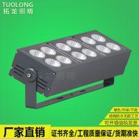 拓龙照明单头 双头 多头模组led投光灯户外投射灯AC220V 大功率照明投光灯