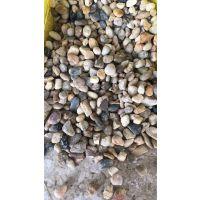 山西太原厂家供应白色鹅卵石批发 园林造景彩石铺路 水处理鹅卵石滤料