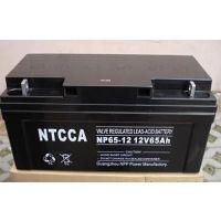 NTCCA德国恩科蓄电池NP65-12(12V65AH)厂家直销