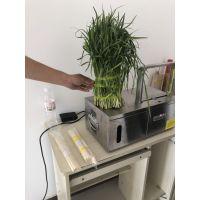 厂家生产自动蔬菜捆扎机 韭菜香菜扎把机 捆菜机设备 鲁强机械