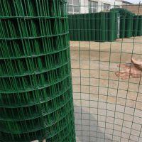 山东荷兰网 养殖铁丝网 绿色围栏网