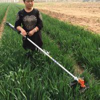 丘陵地专用割草机 背负式小型农业割草机