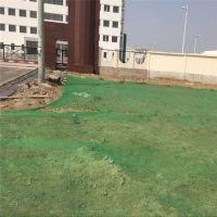 西安盖土网直销 1.5-6针盖土网现货 建筑工地裸土覆盖网