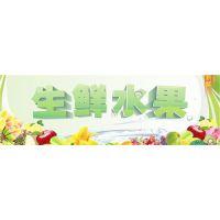 上海冷链运输专线 上海到深圳冷冻货运 直达快捷
