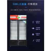 冷藏柜展示柜保鲜柜立式双门商用饮料冷饮蔬菜水果柜冰柜啤酒柜