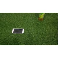 供应广东幼儿园 仿真地毯草坪室内外草坪 彩虹跑道