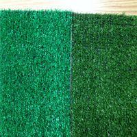 北京铺地假草坪 走车塑料网 优质草坪防护网