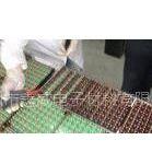 单、双组份室温固化灌封胶、透明电子灌封胶