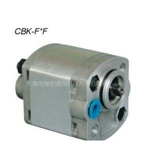 供应高压结构紧凑CBK齿轮泵,CBW齿轮泵
